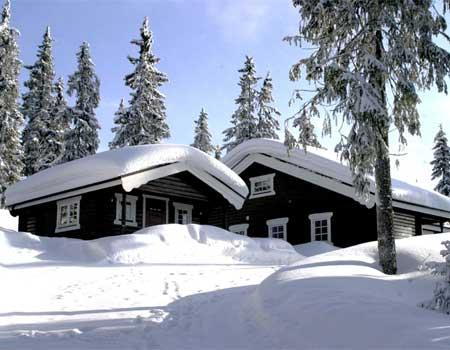Hälsinge Fjäll- och Kusthus - Gussbo Loft 111
