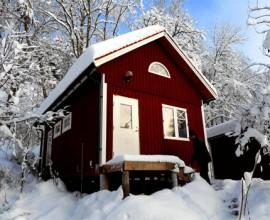 lundqvist-tra-jpg